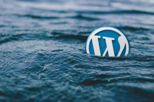 WORDPRESS logo: 'at sea'